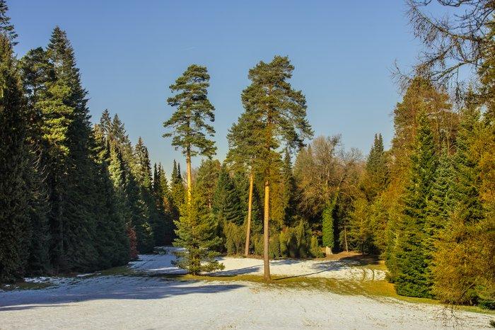 Krásy lesa - pozvánka